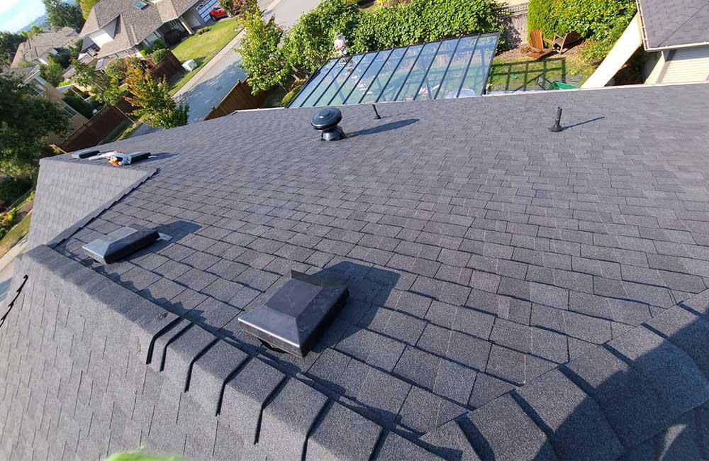 Asphalt shingle moire black roof